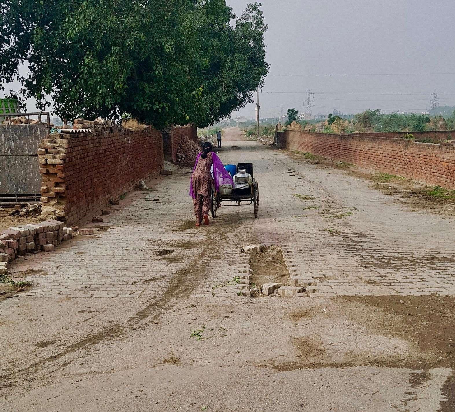 India Image 5