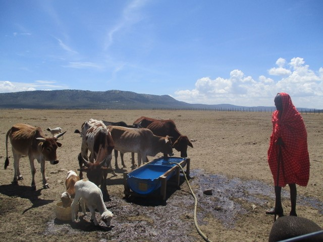 Ngowsani West, Kenya 6